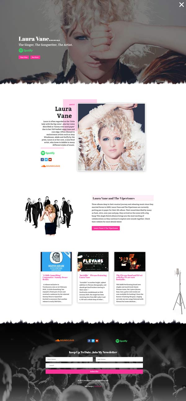 Laura Vane Web Design Project by Webamplo